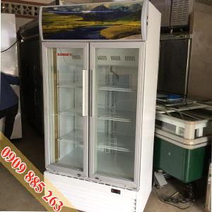 Tủ Mát Sanaky 600 Lít